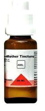 CURCUMA LONGA MOTHER TINCTURE Q